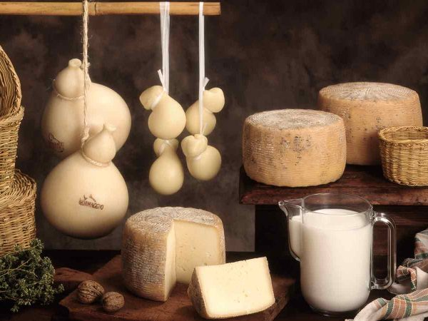 Categories Food Cheese for all tastes in Sorrento
